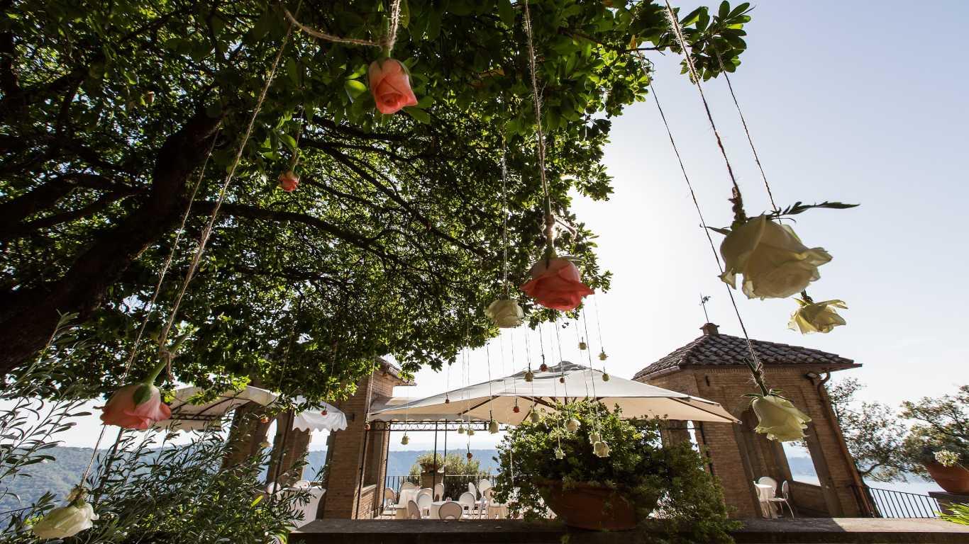 Punta-san-michele-tree-rose